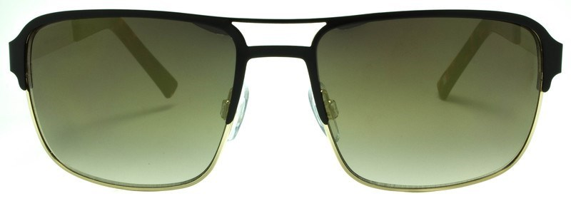 Picture of EGO: 7029-02:Matte Black and Gold Frame: Bronze Lens